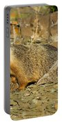 Yellow-bellied Marmot Portable Battery Charger