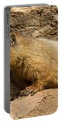 Yellow Bellied Marmot Checking Out The Neighborhood In Rocky Mountain National Park Portable Battery Charger