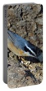 Yellow Bellied Nuthatch Portable Battery Charger