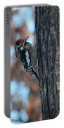 Yellow Bellied Sapsucker Portable Battery Charger