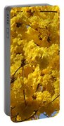 Yellow Blossoms Of A Tabebuia Tree Portable Battery Charger
