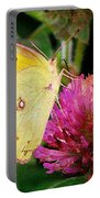 Yellow Butterfly On Pink Clover Portable Battery Charger