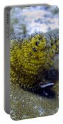 Yellow Christmas Tree Worm Portable Battery Charger