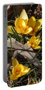 Yellow Crocuses Portable Battery Charger