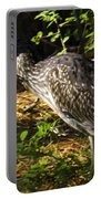 Yellow-crowned Night Heron Eating A Fiddler Crab Dinner Portable Battery Charger