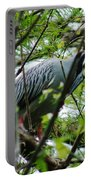 Yellow Crowned Night Heron In Display Portable Battery Charger