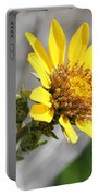 Yellow Flower - Carey's Balsamroot Portable Battery Charger