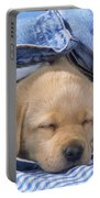 Yellow Labrador Puppy Asleep In Jeans Portable Battery Charger