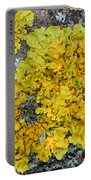 Yellow Lichen Portable Battery Charger