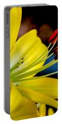 Yellow Lily Anthers Portable Battery Charger by Robert Bales
