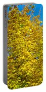 Yellow Maple Portable Battery Charger