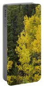 Yellow On Green Portable Battery Charger