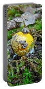 Yellow Patches Baby Mushroom - Amanita Muscaria Portable Battery Charger