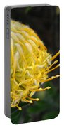 Yellow Pincushion Protea Portable Battery Charger