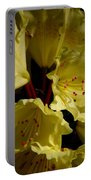Yellow Rhododendron Portable Battery Charger