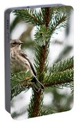 Yellow Rumped Evergreen Portable Battery Charger
