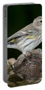 Yellow-rumped Warbler Hen Portable Battery Charger