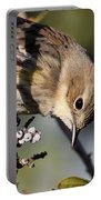 Yellow-rumped Warbler - Precious Portable Battery Charger