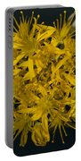 Yellow Sedum Portable Battery Charger