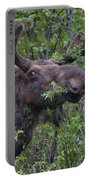 Yellowstone Munching Moose Portable Battery Charger