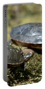 Yoga Turtles Portable Battery Charger
