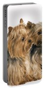 Yorkshire Terrier Dogs Portable Battery Charger