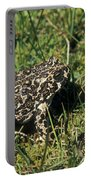 Yosemite Toad Bufo Canorus Portable Battery Charger