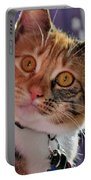 You Talking To Me? Portable Battery Charger
