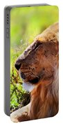 Young Adult Male Lion On Savanna. Safari In Serengeti Portable Battery Charger