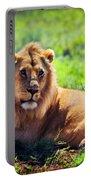 Young Adult Male Lion On Savanna. Safari In Serengeti. Tanzania Portable Battery Charger