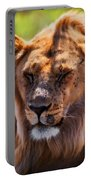 Young Adult Male Lion Portrait. Safari In Serengeti Portable Battery Charger