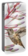 Young Allen's Hummingbird Portable Battery Charger