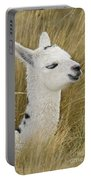 Young Alpaca Portable Battery Charger