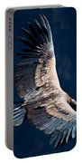 Young Andean Condor Portable Battery Charger