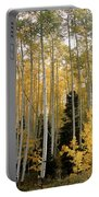 Young Aspens Portable Battery Charger