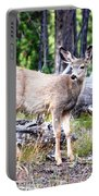 Young Beauty Portable Battery Charger