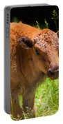 Young Bison Portable Battery Charger