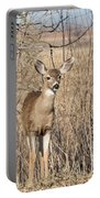 Young Black-tailed Deer Portable Battery Charger