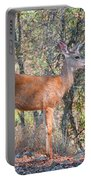 Young Doe Portable Battery Charger