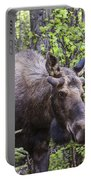 Young Fella Portable Battery Charger