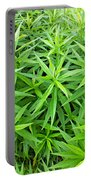Young Goldenrod Before Blossoms Portable Battery Charger