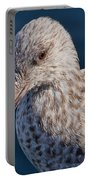 Young Herring Gull Portable Battery Charger