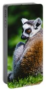 Young Lemur Portable Battery Charger