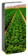Young Lettuce Portable Battery Charger