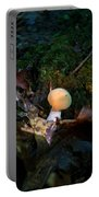 Young Lonely Mushroom 2 Portable Battery Charger