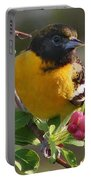 Young Male Oriole Portable Battery Charger