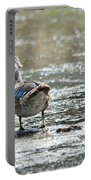 Young Male Wood Duck Portable Battery Charger