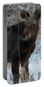 Young Moose 4 Portable Battery Charger