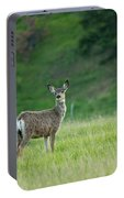Young Mule Deer Portable Battery Charger
