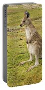 Young Roo Portable Battery Charger